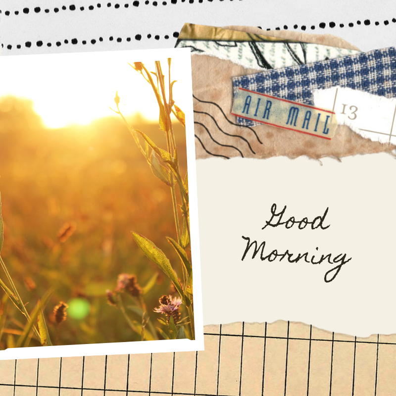 Morning pages journal photot