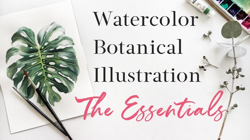 Botanical watercolor illustration class